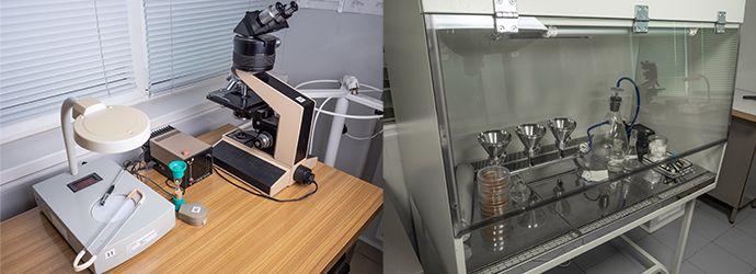 Мікробіологічні випробування показників якості та безпечності продукції